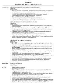 Programmatic Marketing Manager Resume Samples Velvet Jobs
