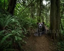 Digital Forest Background