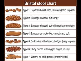 Bristol Stool Chart Type 6