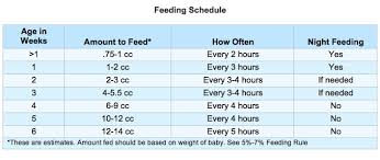 Enfamil Newborn Formula Feeding Chart Baby Squirrel Care Formula Feeding