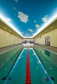 olympic sized pool for those really serious about their training in the pool amazing indoor pool lighting