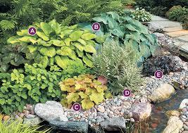2 shade garden bos for hosta