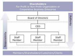 Business Organizational Chart Simple Non Profit Organizational Chart Jose Mulinohouse Co Not For Business
