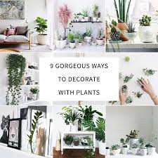 image decorate. 9 Gorgeous Ways To Decorate With Plants Image A