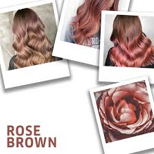 how to get the rose brown hair look