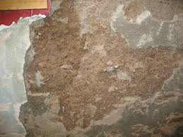 basement wall mortar 20080502 0533 jpg