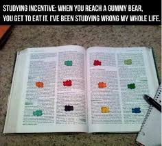 Gummy Bear Studying Incentive | WeKnowMemes via Relatably.com