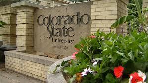 Risultati immagini per colorado state university usa