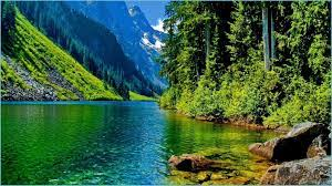 Pictures) - Nature Hd Wallpaper For Pc ...
