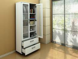 bookshelf astonishing modern bookcase with doors terrific design white glass door and cabinets contemporary antique beds