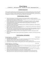Sales Resume Objective Berathen Com