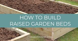 best width for raised beds page 1