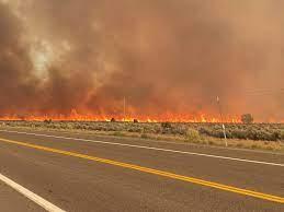 Tamarack Fire burning near South Lake ...
