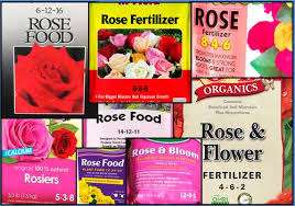 Plants Do Not Need To Be Fed Stop Fertilizing Garden Myths