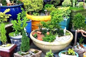 fairy garden container ideas. Fairy Garden Containers Container How To Make Ideas Design Image Of