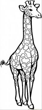 Small Picture SIMPLE GIRAFFE OUTLINE Print out and color pictures of a variety