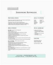 Hair Stylist Resume Examples Hair Stylist Resume Examples Top Hair Stylist Resume Example