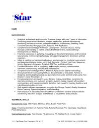 Information Technology Business Analyst Resume Sample Best Others ...