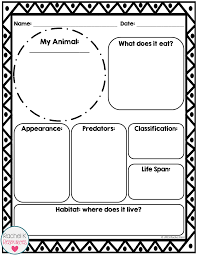 Animal Report Template Report Template Information Report