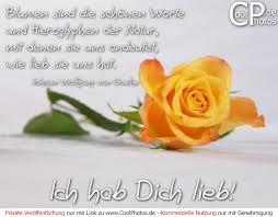 Coolphotosde Ich Hab Dich Lieb Blumen Sind Die Schönen Worte Und
