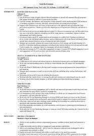 Crm Project Manager Resume CRM Manager Resume Samples Velvet Jobs 17