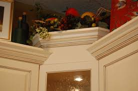 Interesting Custom Kitchen Cabinet Makers Cabinets Tampa And Decor