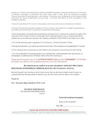 Offer Letter Format For Auditor Fresh 6 Appointment Letter Sample