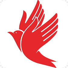 Choosing the perfect insurance company logo ideas. Bird Logo Png Download 1024 1024 Free Transparent Insurance Png Download Cleanpng Kisspng