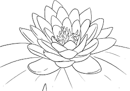 Flowers Coloring Pages For Kids Lotus Coloring Pages Printable