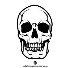 人間の頭蓋骨ベクター クリップ アート パブリックドメインのベクトル