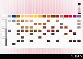 09p Shades Eq Chart Redken Chromatics Hair Color Swatches Elegant 16 Unique