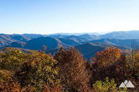hike to stunning views from the gry wildflower covered siler bald mountain summit on