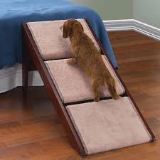 image of dog stairs for high bed ramp knowing before build dog stairs for within