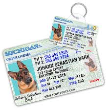 Tag For Driver Custom Pets Dog Card Wallet Florida License And IxSnZ