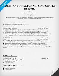 Assistant Director Nursing Resume Template (resumecompanion.com)