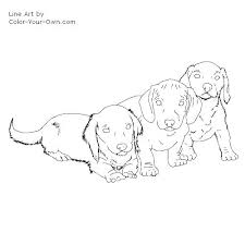 Dachshund Coloring Page Dog Cake Templates Dachshund Outline
