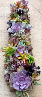 Succulent centerpieces / succulent table runner-great for outdoor settings