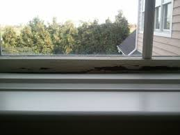 Pella Windows Louisville Ky Top 515 Reviews And Complaints About Pella Page 9