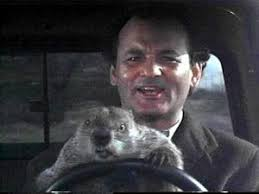 Groundhog Day: Comedy meets Philosophy | muse of Odin via Relatably.com