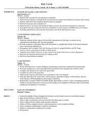 Resume Posting Cash Posting Resume Samples Velvet Jobs 34