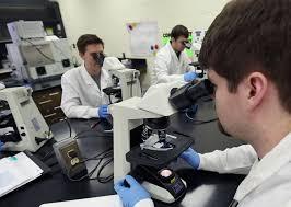 Medical Laboratory Science Undergraduate | School Of Health ...