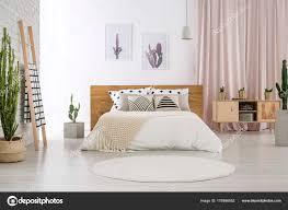 Helle Schlafzimmer Mit Kaktus Motiv Stockfoto Photographeeeu