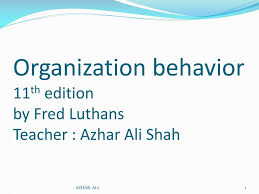 What Is Organizational Behavior Ppt Organization Behavior 11 Th Edition By Fred Luthans