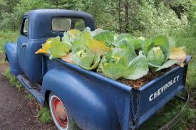 alaska botanical garden non endowed fund