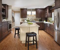 contemporary kitchen cabinets by decora cabinetry