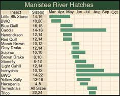 Manistee River Flow Chart 53 Best Fly Fishing Michigan Images Fly Fishing