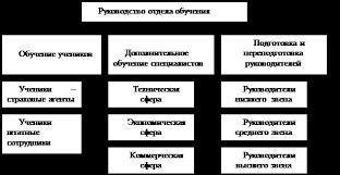 Дипломная работа Особенности организации и управления подготовкой  Организационная структура отдела обучения персонала