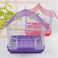 glass bird cages for