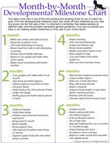 Developmental Milestone Chart For Babies Month By Month