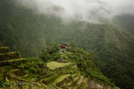 photo essay the banaue rice terraces batad rice terraces of the philippine cordillera in ifugao
